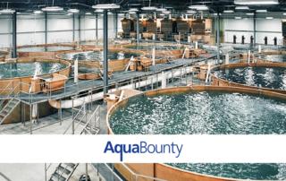 Aquabounty