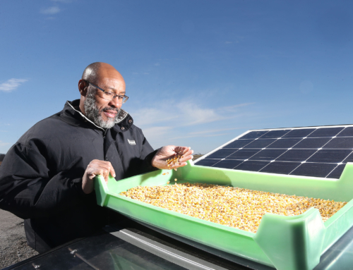 Startup developing solar-powered crop-drying devices receives grants worth $150,000