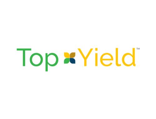 TOPYEILD AG